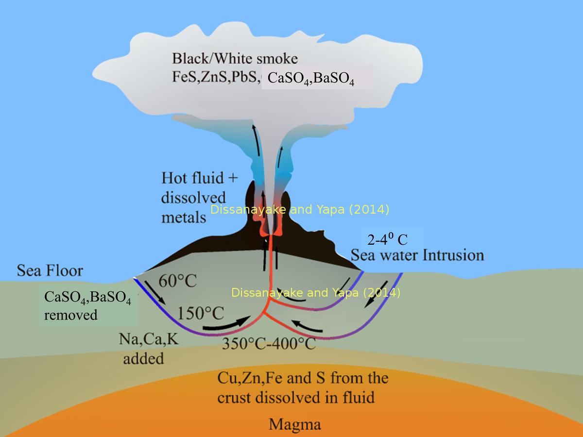 Hydrothermal Vent Model